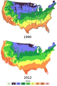The 2012 Plant Hardiness Zone Map unveiled by the US Department of Agriculture this year shows average annual extreme minimum temperatures based on data from 1976-2005. In this version 2012 is modified to use the same colour code as 1990. Much of the US was one 5°F (2.8°C) half-zone colder in the 1990 Plant Hardiness Zone Map compared to the latest version. Credit: US Department of Agriculture/Friend of the Earth